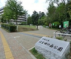 江古田の森公園の画像1