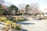 渋沢金井公園