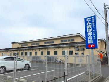 富士見市/たんぽぽ保育園の画像1