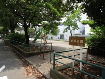新浜公園の画像1