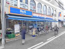 Big-A(ビッグ・エー) 相模原相模台店