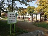 宮の森こだま公園