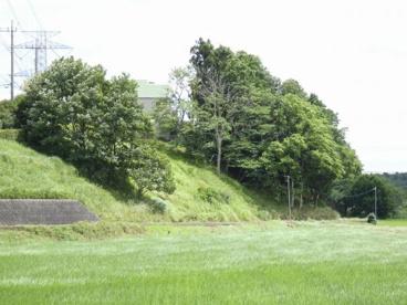 石神緑地の画像1