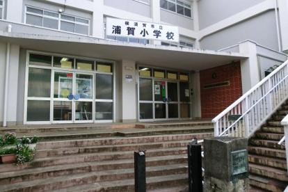 横須賀市立浦賀小学校の画像1