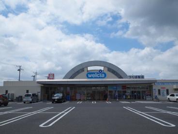ウェルシア桜店の画像1