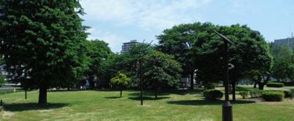 都立青山公園 南地区の画像1