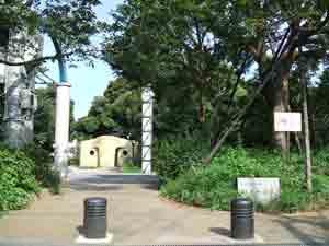 もみじ山公園の画像1