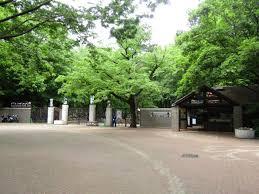 井の頭自然文化園の画像1