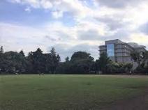 多摩平第一公園グラウンド少年野球場