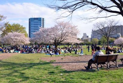 都立木場公園の画像1