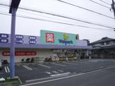 Welpark(ウェルパーク) 東葛西店