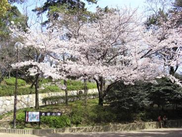 西田公園の画像1
