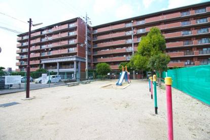 木幡西浦第五遊園の画像1