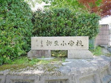 奈良市立柳生小学校の画像2