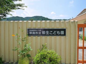奈良市立認定こども園柳生こども園の画像5