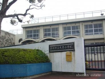 平塚市立大原小学校の画像1