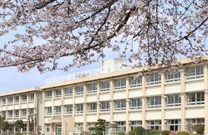 前橋市立城南小学校の画像1