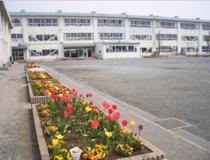 茅ヶ崎市立松林小学校