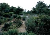 木場公園都市緑化植物園