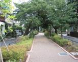 呑川本流緑道