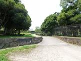菊田水鳥公園