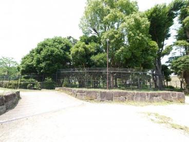 菊田水鳥公園の画像2