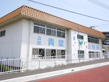 青葉幼稚園の画像3