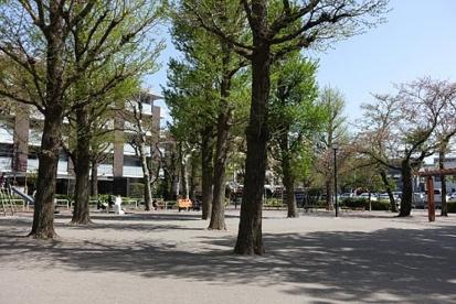 田向公園の画像1