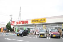スギドラッグ 寒川店