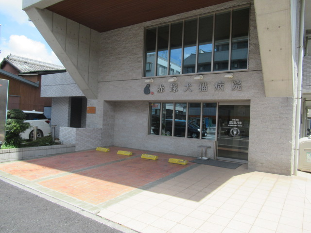 赤塚犬猫病院の画像