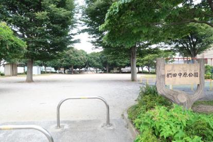 椚田中原公園の画像1