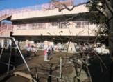 高円寺東保育園