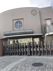 聖徳大学附属浦安幼稚園の画像1