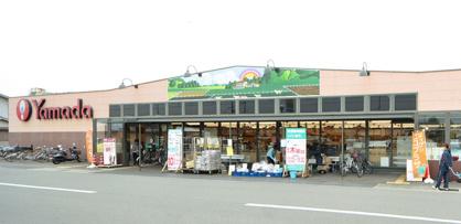 ヤマダストアー大津店の画像1
