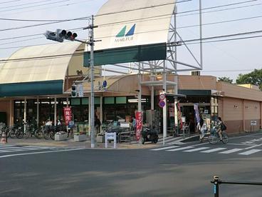 マルフジ南田園店の画像1