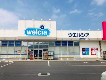 ウェルシア沼津カタクラパーク店の画像1