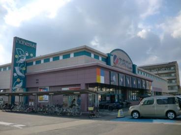 カネスエ 岐大前店の画像1