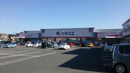カネスエ 竹鼻店の画像1