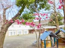 学習院幼稚園