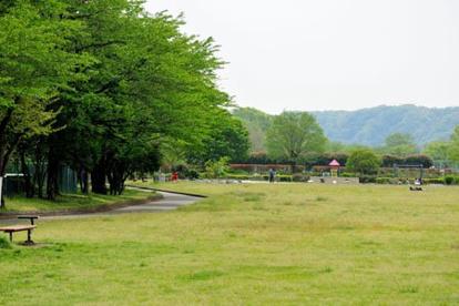 多摩川緑地福生南公園の画像1