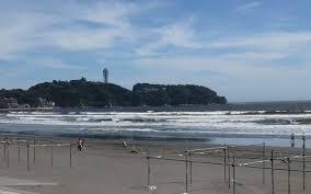 湘南海浜公園の画像1