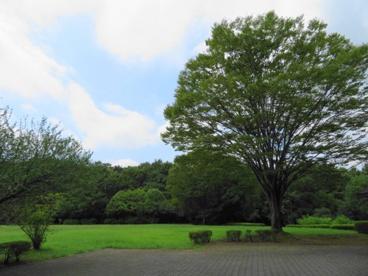 長岡公園の画像5
