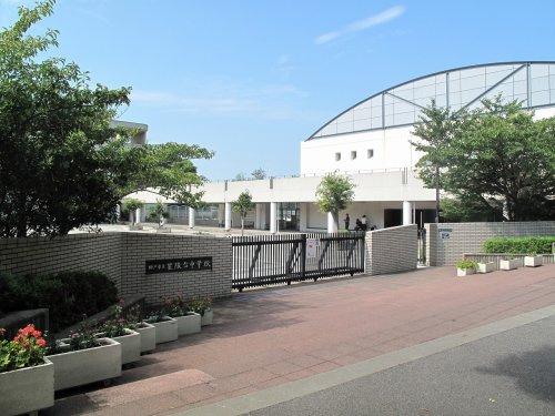 星陵台中学校の画像