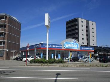 ウェルシア小新店の画像1