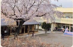 中神保育園の画像1