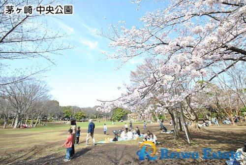 茅ヶ崎市 中央公園の画像