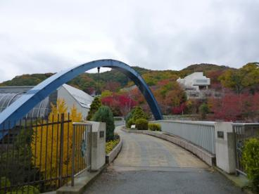 池田市立 五月山体育館の画像1