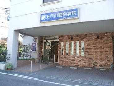 五月山動物病院の画像1