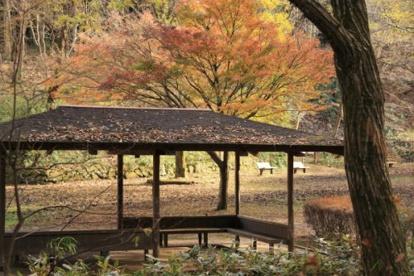 都立小峰公園の画像1