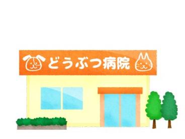 湘南緑が浜動物病院の画像1